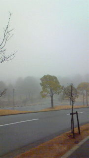 濃霧のため